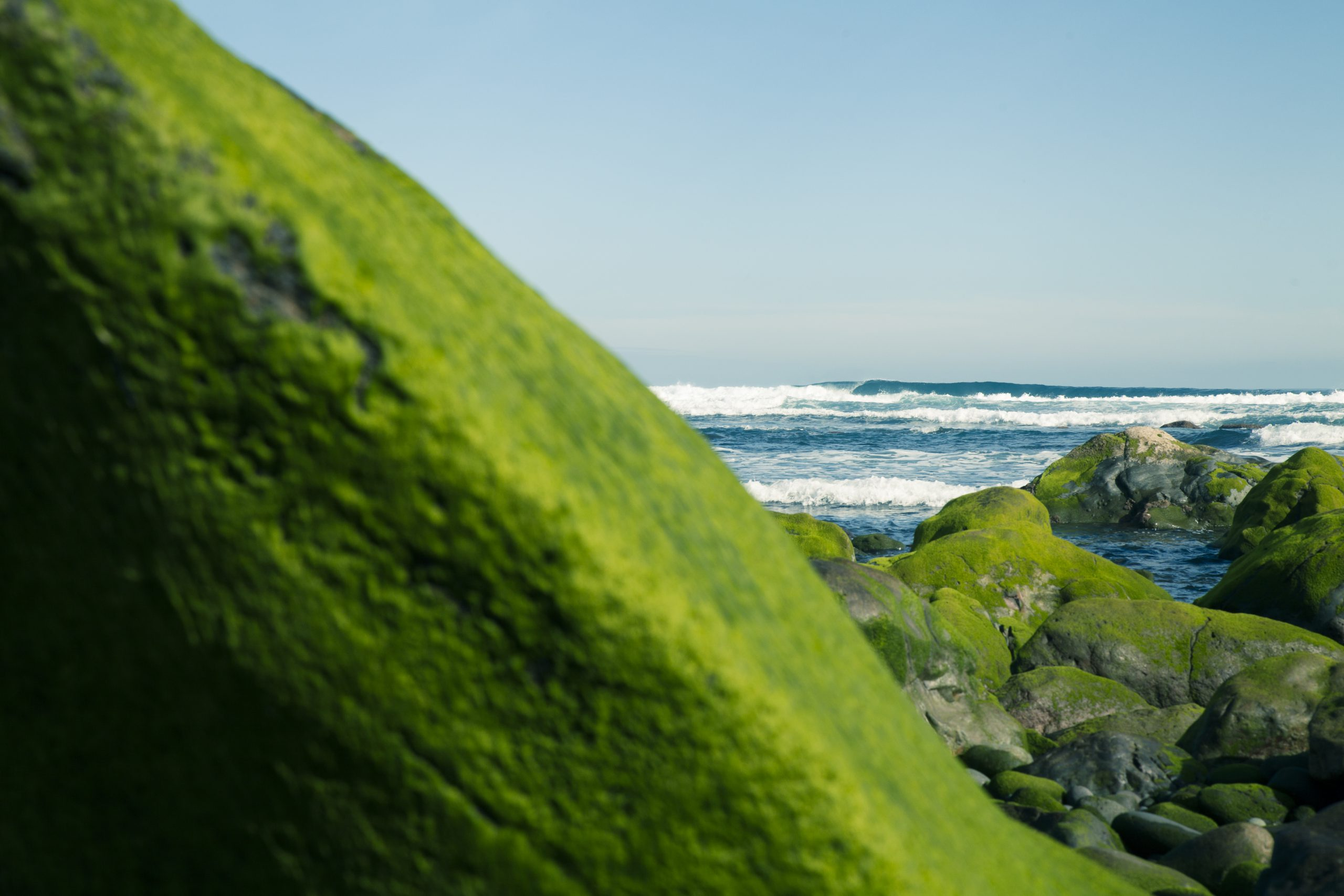 surf-trip-surf-camp-las-palmas